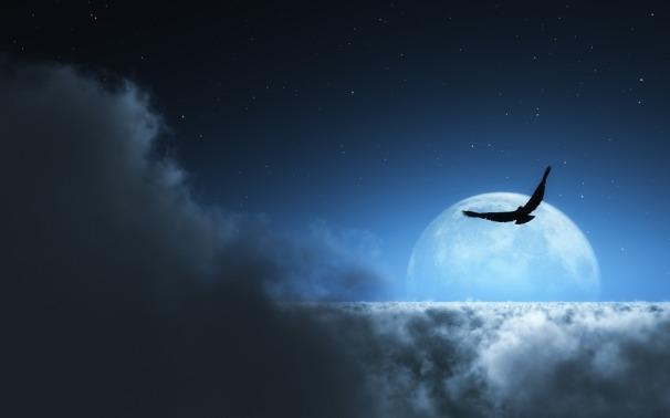 sky-955983_960_720